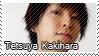 Tetsuya Kakihara 04 by makingstamps