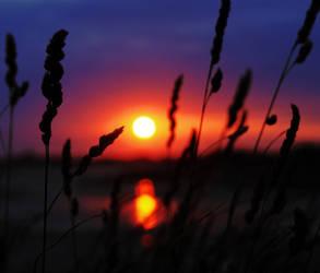 Sunset by hayleyonfire