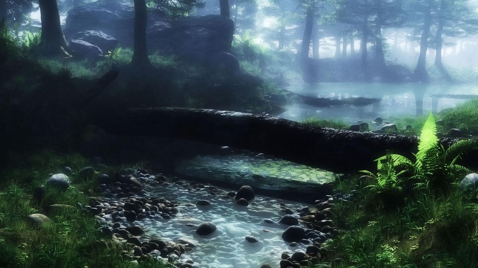 Morning at Swamp by hoangphamvfx