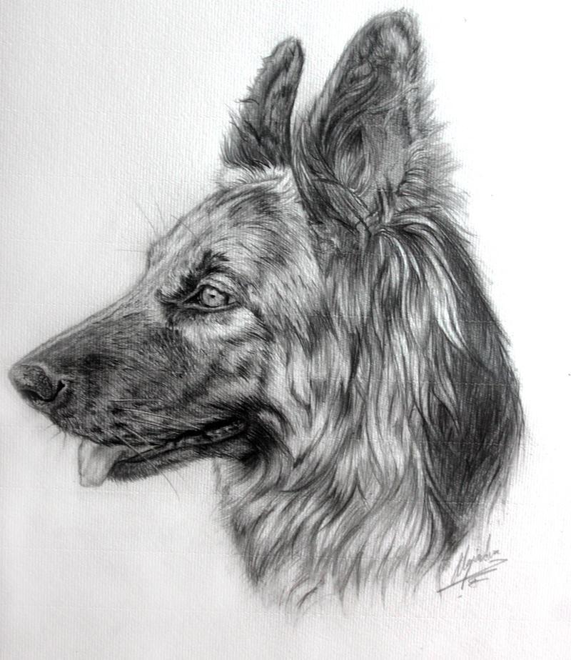 Nikki portrait by Alejandra-perez