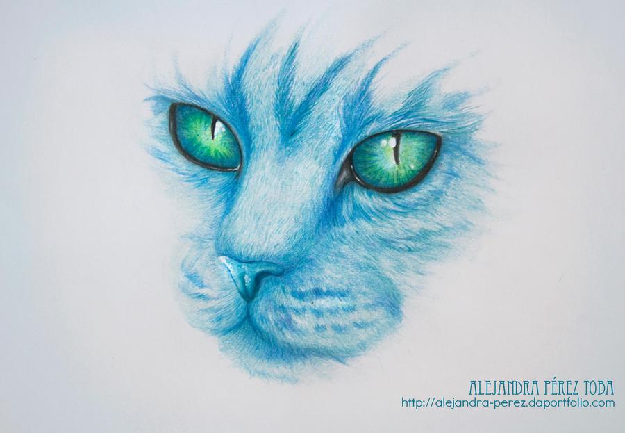 The Blue Cat by Alejandra-perez