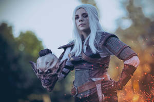 Geralt of Rivia by Anhyra