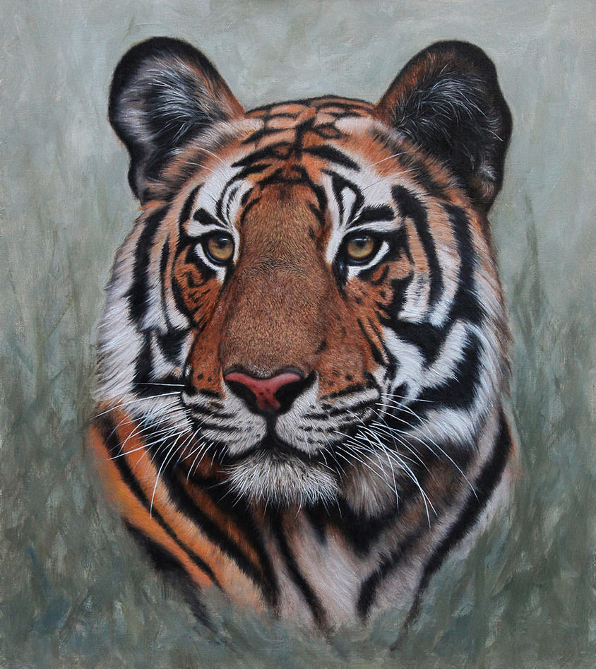 Bengal Tiger Portrait. Oil on panel by painterman33
