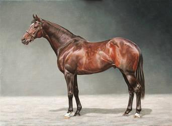 Racehorse Portrait. Oil on canvas panel. by painterman33