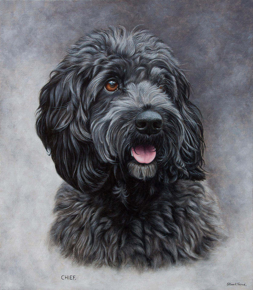 Painting Of A Black Cockapoo