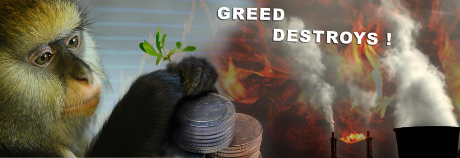 the pearl how greed destroys Scientology: the thriving cult of greed and power this famous article critical of scientology has been the target of an organized book-burning campaign.