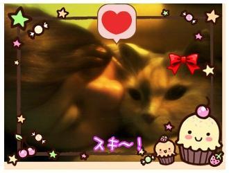 ToriMitsuki's Profile Picture
