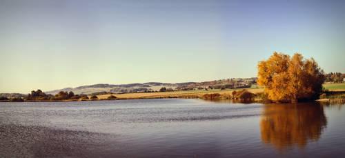 Pond in Autumn by Zuzi-C12