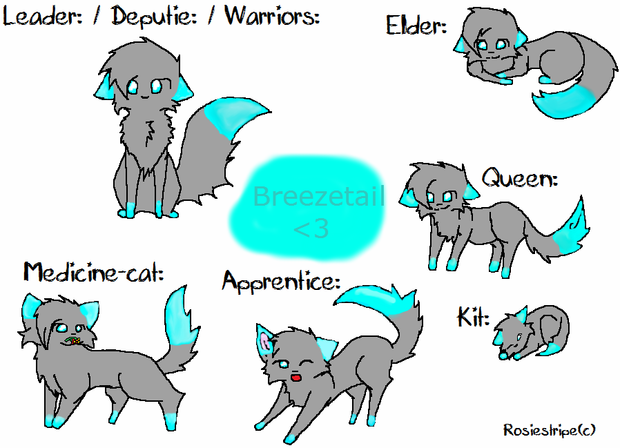 What Rank In A Warrior Cat Clan Are You