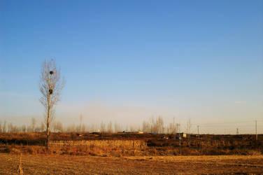 Countryside by nnmushroom