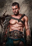 Tribute to Andy Whitfield