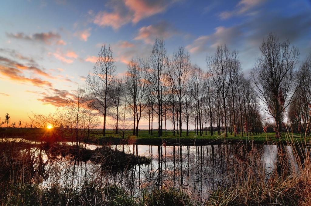 Hitland Sunshine by BDStudio