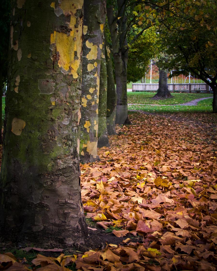 Autumn by AstarothSquirrel
