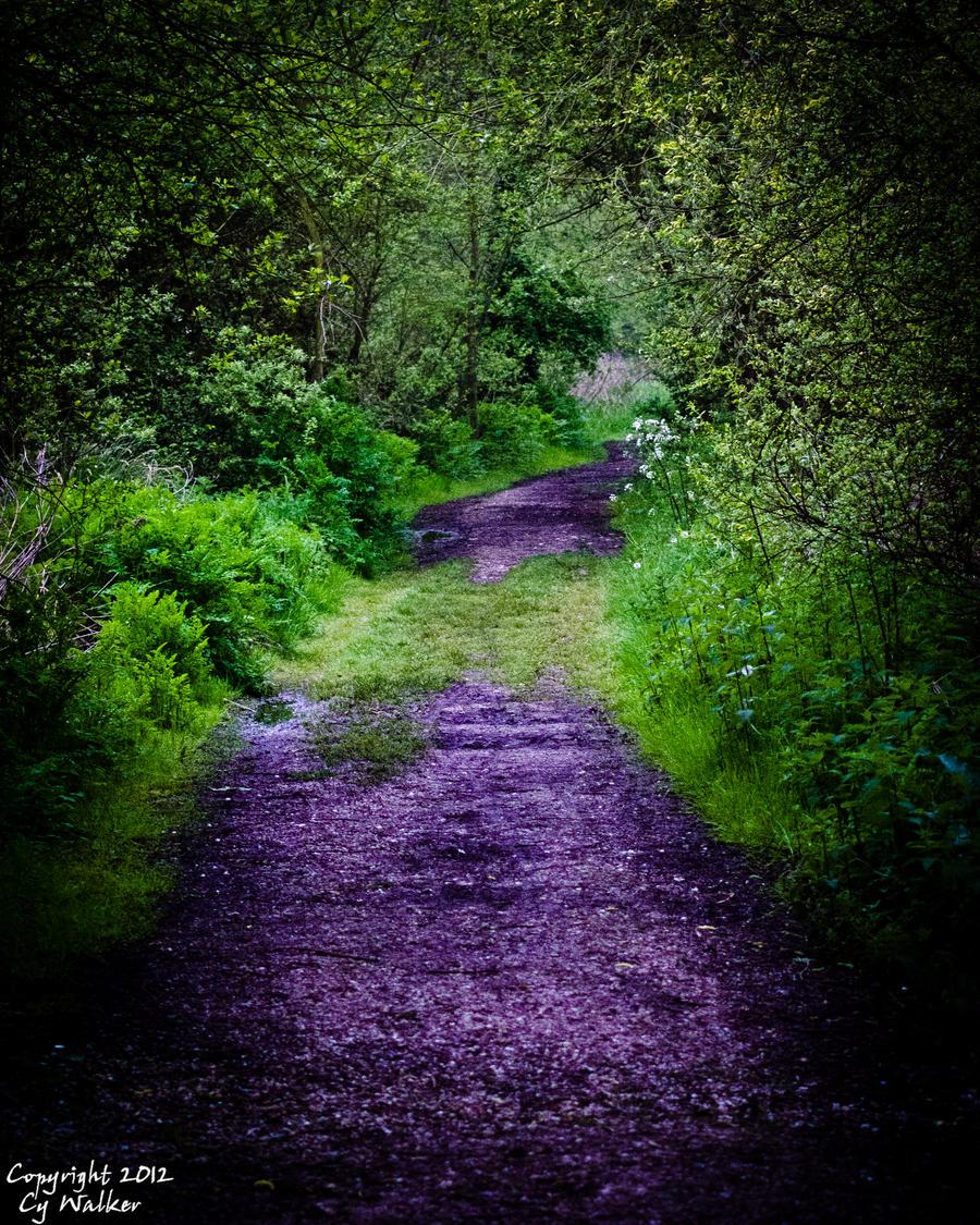 Westbere Path by AstarothSquirrel