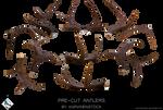 Antlers (Pre-cut Stock)