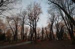 Kiev013