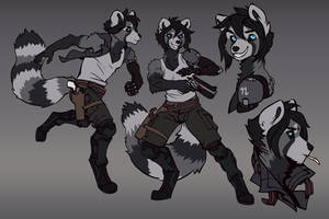 Commission: Red (grey) Panda Space Rogue
