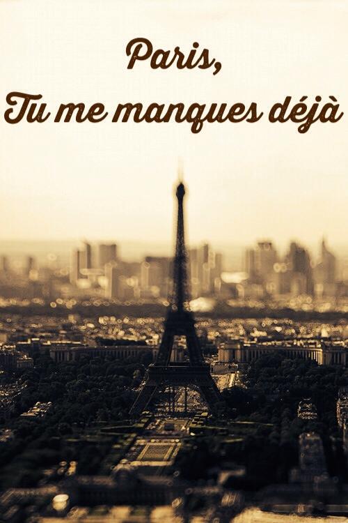 Paris, Tu me manques deja by salvadorsam