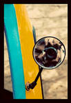 here's looking at me, kid by abhimanyughoshal
