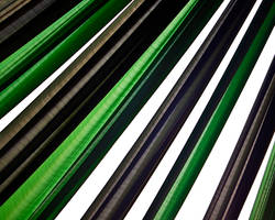 green vs. black vs. white by abhimanyughoshal