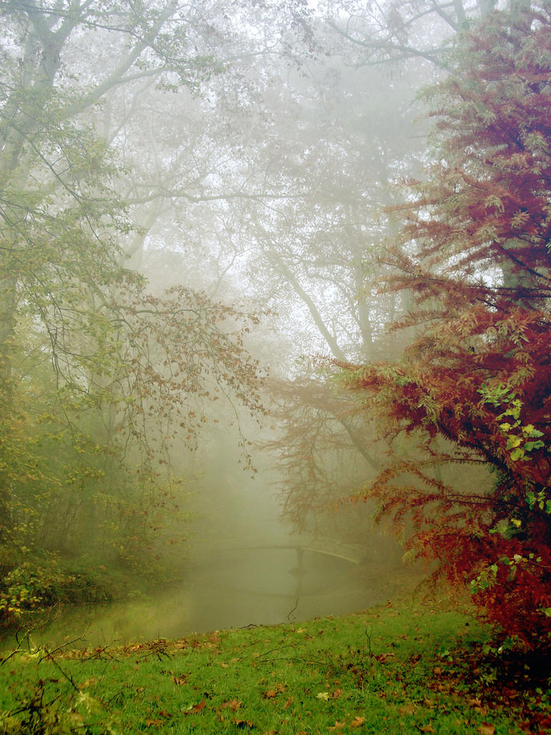 foggy forest by la-Structure-du-Ciel
