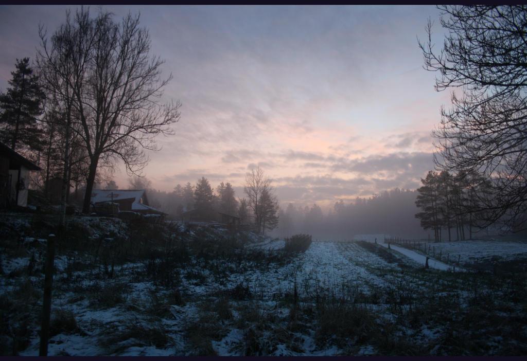 Winterpoesie by HeathenHeart
