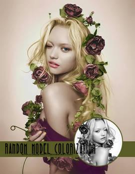 Random Model Colorization