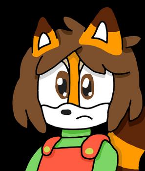 Confused Raccoon....