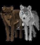 Kalassin und Dark Wolf