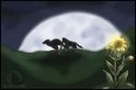 Wolfsblume
