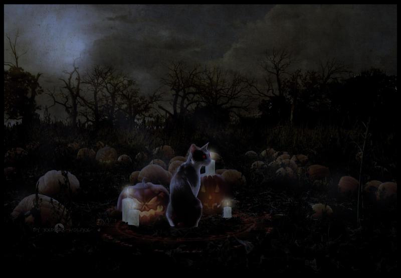 Happy Halloween by xxDark-Wolfxx