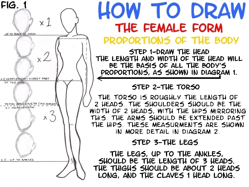 The Female Form - Part 1 by lubyelfears on DeviantArt