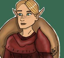 Shieldmaiden of Denerim by Sparky28