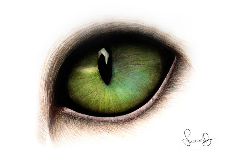 Cat eye by Strawberry-2110 on DeviantArt
