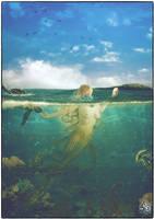 Mermaid by Quijuka
