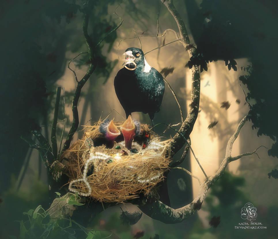 Magpie's Treasure by Quijuka