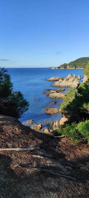 Lloret de Mar (Girona)