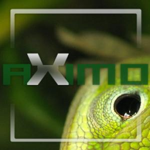 aXimo's Profile Picture