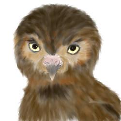 Elf Owl by LadyLiena