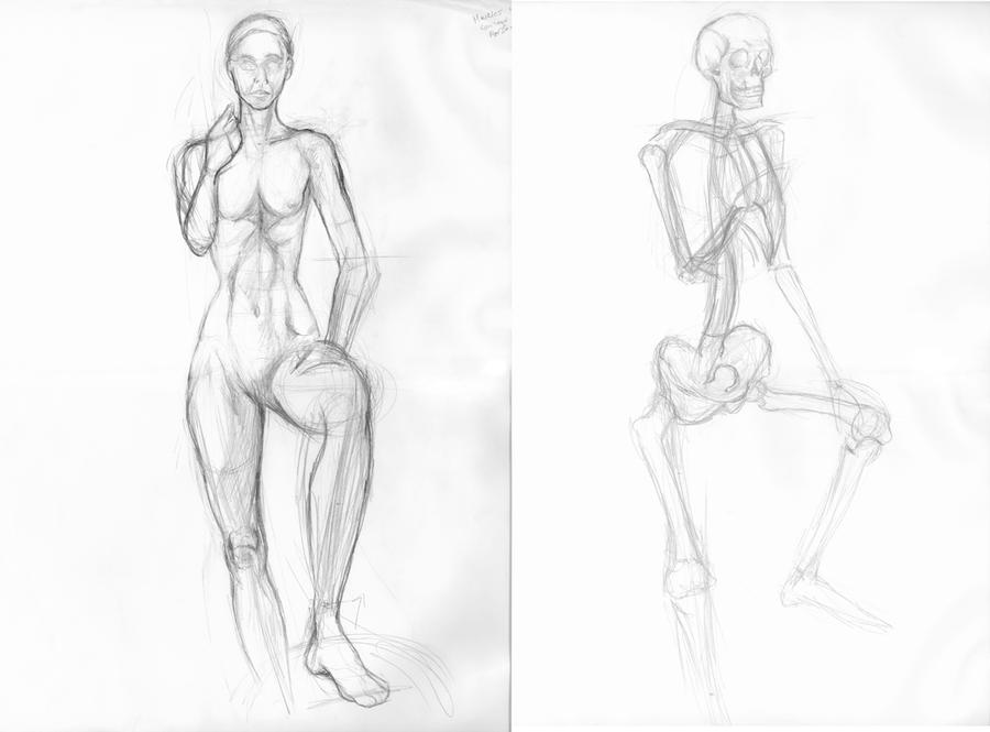 Anatomy and the Live Model Wk1 by SmilinJack on DeviantArt