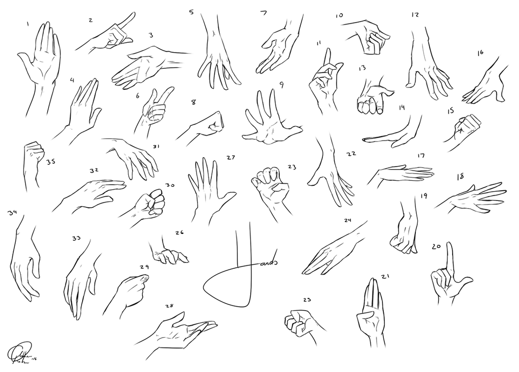 Hand Anatomy Practice by lovelylady-Ashlee on DeviantArt