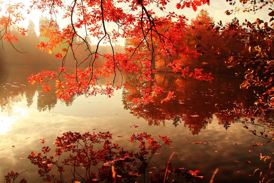 Lake II by ulivonboedefeld