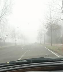 Fogg road