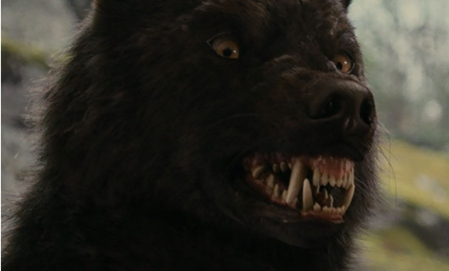 who s afraid of the big black wolf by mtindoll on deviantart who s afraid of the big black wolf by