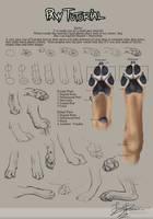 Paw Tutorial 2012 by HannasArtStudio