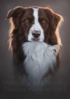 Pet Portrait - Rue by HannasArtStudio