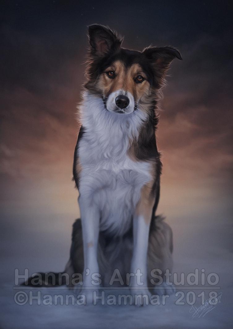 Pet Portrait - Yxa by HannasArtStudio