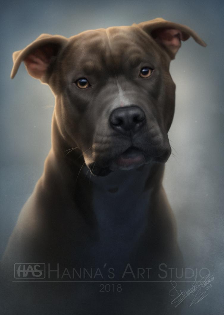 Pet Portrait Commission - Reizakirga @ FA by HannasArtStudio