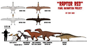 Raptor Red Project: Early Size Chart