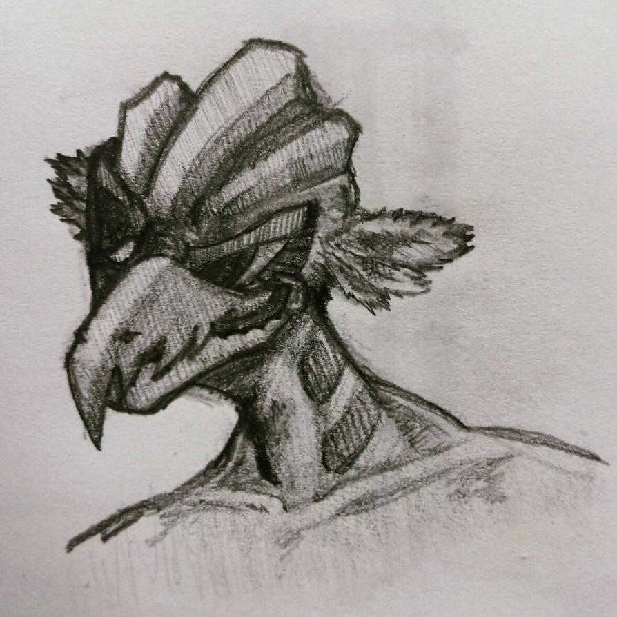 Birdman by AaronZX1